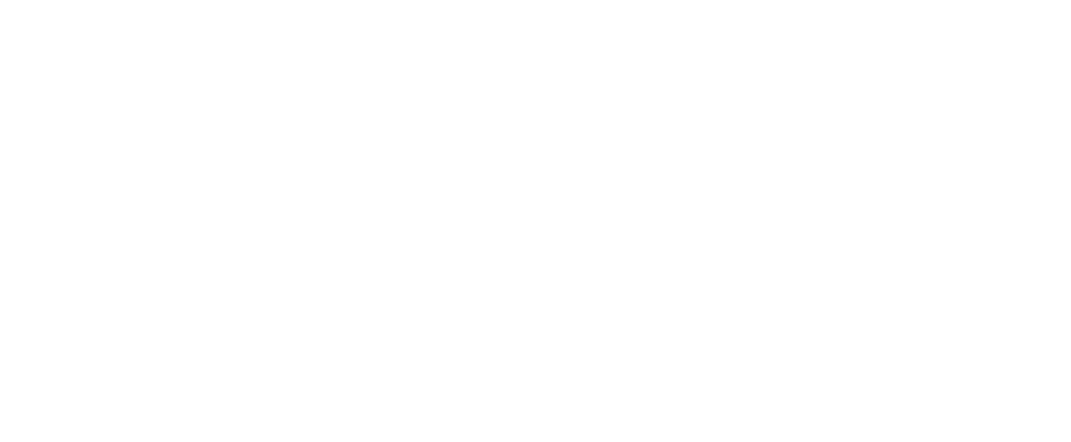 Echo Bay Vineyards
